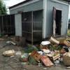 В Новошахтинске в заброшенном зоопарке голодают животные