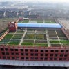 Что китайцы строят на крышах домов