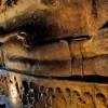Мужчина, преследуя тигра, нашел пещеру, от вида которой он замер на месте