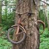 Ты миллион раз видел данное фото, но не знал, как этот велосипед сюда попал