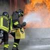 Итальянские пожарные специально поджигали лес, чтобы получить премию