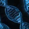 Ученые удалили из ДНК человека ген, отвечающий за заболевание