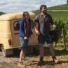 7 фильмов, до краев наполненных солнцем и вином, которые сделают день лучше!
