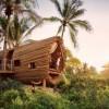15 домиков на деревьях, которые выглядят даже лучше самого роскошного отеля