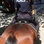 Основное оружие конной полиции