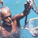 Любопытное о профессии ныряльщика за жемчугом