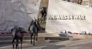 Памятник в память о Британском холокосте животных.