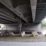 В Тулузе сдается необычная комната под мостом