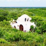 Мексиканский отель предложил своим клиентам номер на дереве
