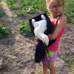 Белорусские спасатели вернули в гнездо выпавшего аиста