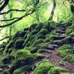 10 реально существующих входов в мифические места