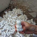 В Саратове ямы на дороге засыпали фигурками котов