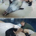 16 фото о том, что бывает, когда у сотрудников зоопарка есть свободное время