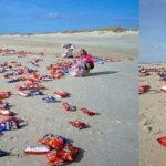 5 самых странных вещей, которые были найдены на пляже