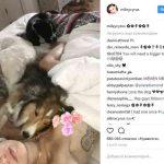 Майли Сайрус опубликовала снимок топлес в постели