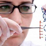 Ученые смогли удалить гены в человеческих эмбрионах