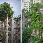 20 примеров того, как природа победила цивилизацию