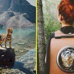 Зуки – кошка-путешественница, которая покорила интернет