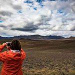 Сможет ли Исландия восстановить леса, разрушенные викингами?