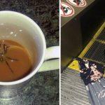 15 пугающих ситуаций, от которых у вас по коже пробегут мурашки