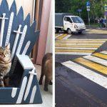 17 фото, демонстрирующих, какие весёлые и нелепые вещи иногда творят люди