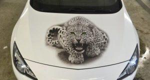 Рисунок леопарда на виниловой пленке, наклеенной на капоте. | Фото: pikabu.ru.