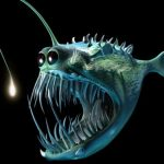 Удивительные тайны Марианской впадины: что скрывает океан