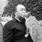 За каждым великим человеком стоит кот