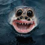 Бессонница на подходе: 12 животных-гибридов из ваших ночных кошмаров