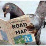 Откуда почтовые голуби знают, куда доставить письма?